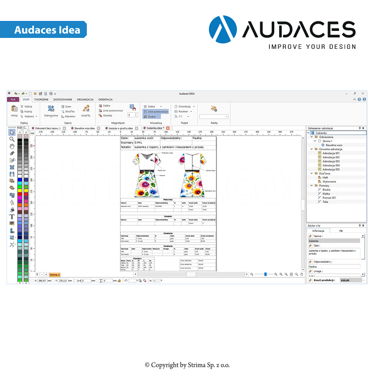 AUDACES Idea - Audaces Idea - user's license