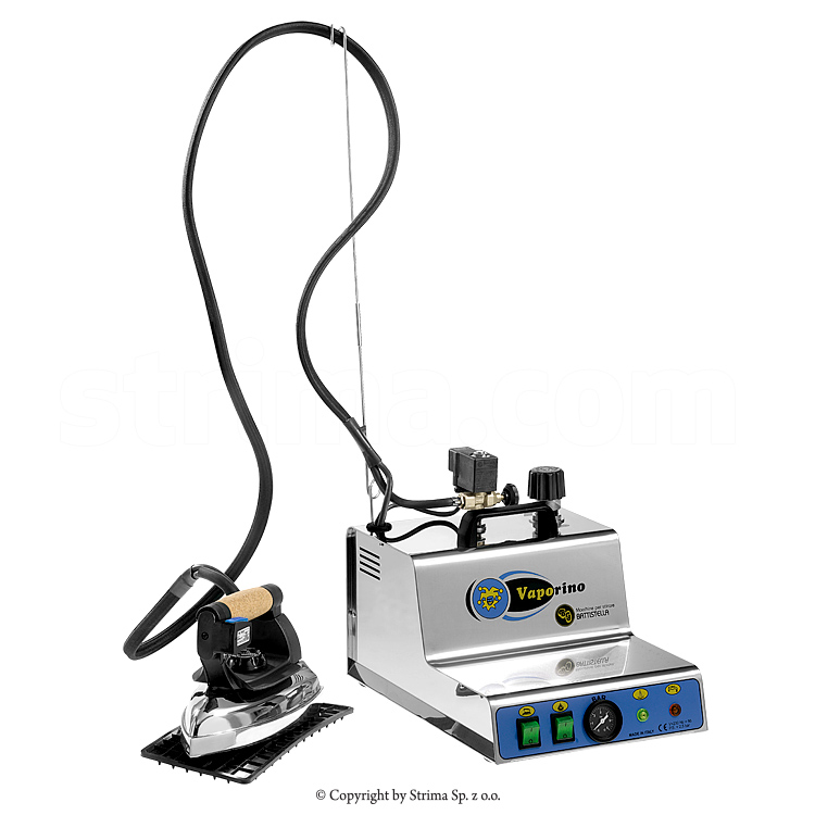 Steam generator with iron