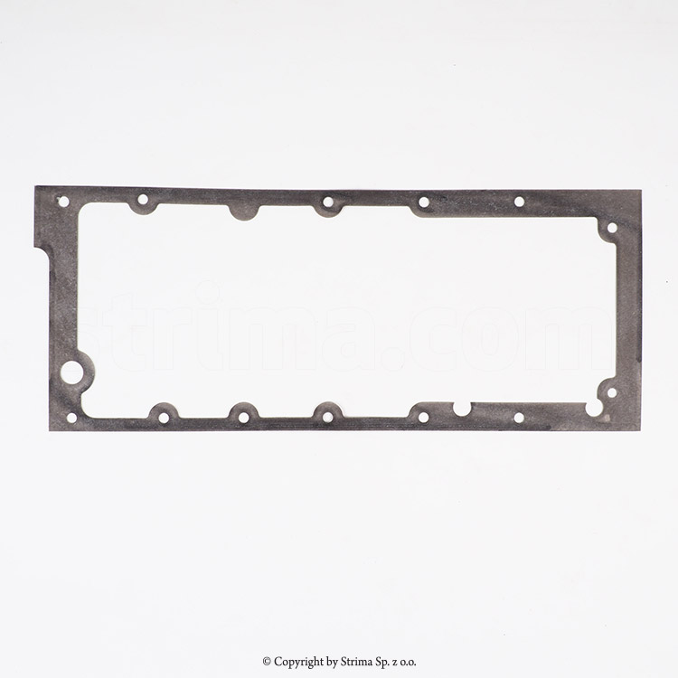 BOTTOM PLATE GASKET